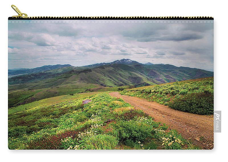 Nevada Carry-all Pouch featuring the photograph Buckskin Cyn June-3116-r1 by Karen W Meyer