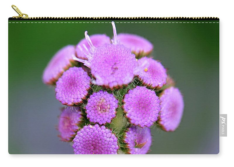 Flower Carry-all Pouch featuring the photograph Buds In Purple by Betty LaRue