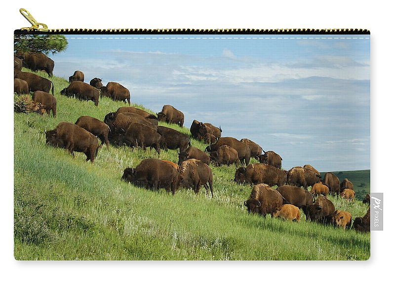 Animals Carry-all Pouch featuring the photograph Buffalo Herd by Ernie Echols