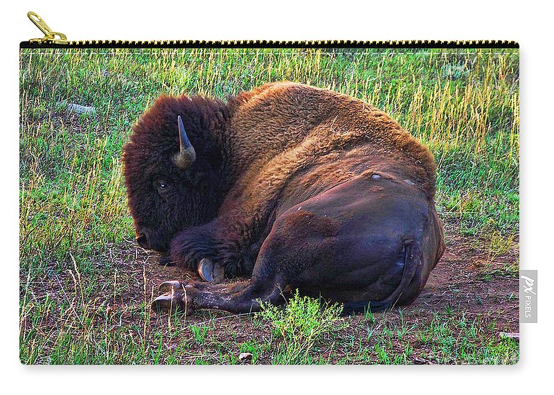 Buffalo Carry-all Pouch featuring the photograph Buffalo In The Badlands by Tommy Anderson