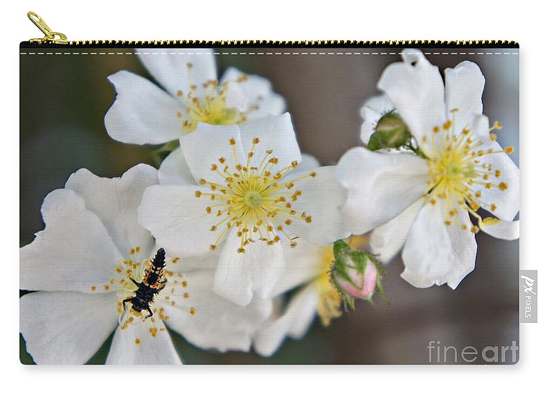 Bug Carry-all Pouch featuring the photograph Bugaboo Apple Blossoms by Lilliana Mendez