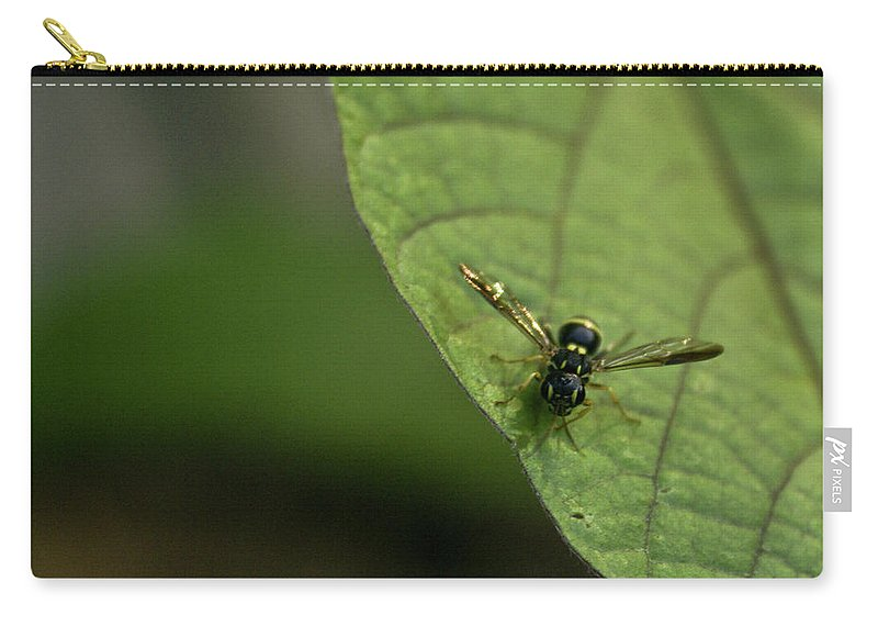 Bugeyed Carry-all Pouch featuring the photograph Bugeyed Fly by Douglas Barnett