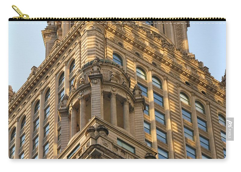 Building Carry-all Pouch featuring the photograph Building Chicago by Diane Greco-Lesser