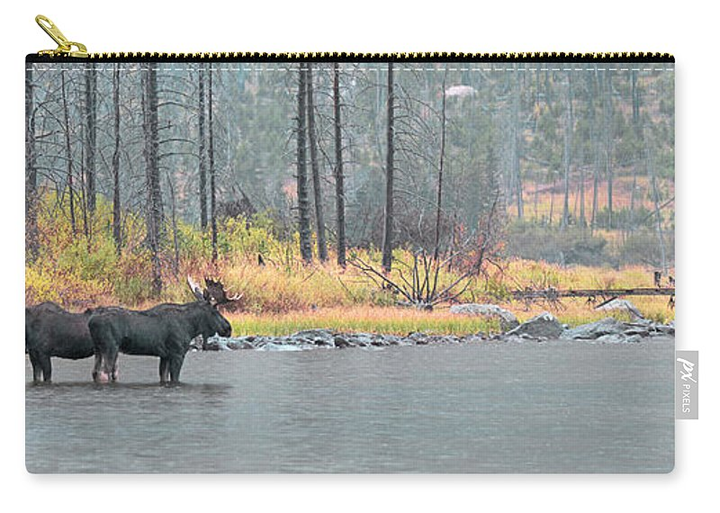East Rosebud Carry-all Pouch featuring the photograph Bull And Cow Moose In East Rosebud Lake Montana by Gary Beeler