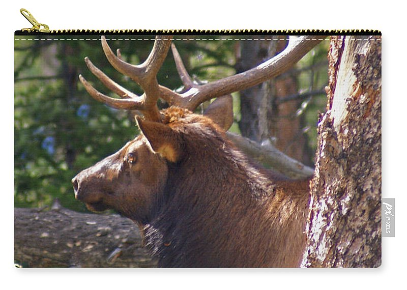 Elk Carry-all Pouch featuring the photograph Bull Elk 2 by Heather Coen