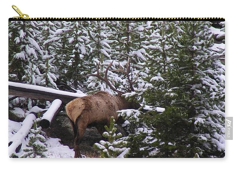 Bull Elk Carry-all Pouch featuring the photograph Bull Elk by Mel Manning
