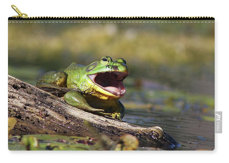 Amphibian Carry-all Pouch featuring the photograph Bull Frog by Mircea Costina Photography
