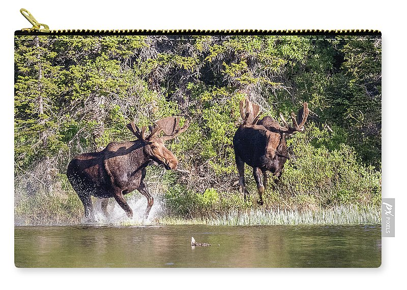 Moose Carry-all Pouch featuring the photograph Bull Moose Defends His Territory by Tony Hake