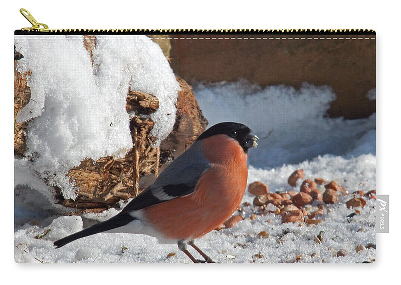 Bullfinch Carry-all Pouch featuring the photograph Bullfinch In The Snow by Bob Kemp