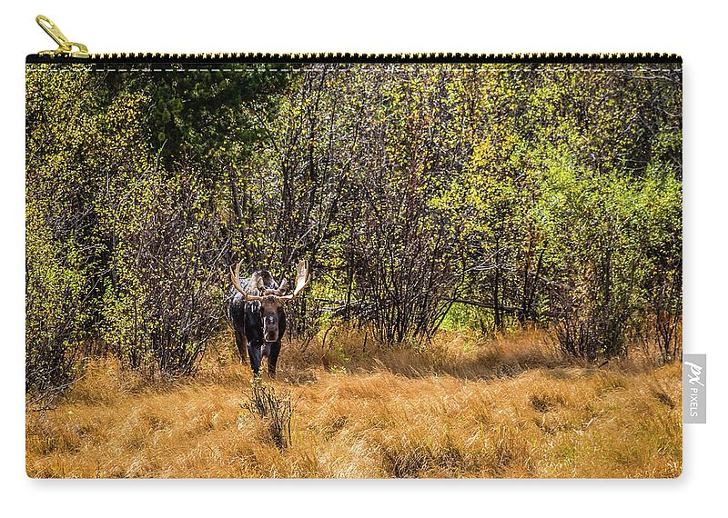 Jon Burch Carry-all Pouch featuring the photograph Bullwinkle by Jon Burch Photography