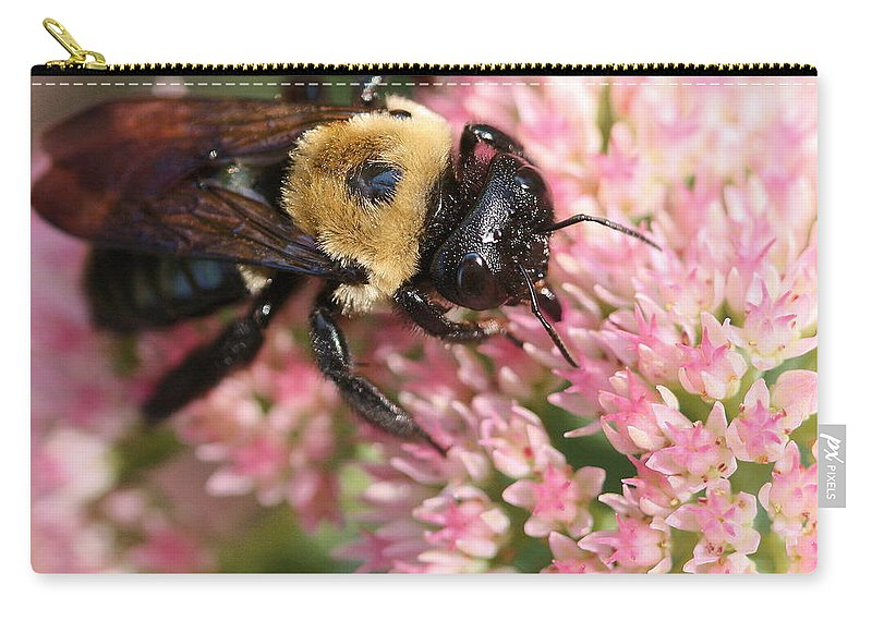 Bee Carry-all Pouch featuring the photograph Bumble Bee Macro by Angela Rath