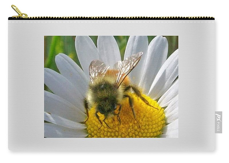 Bumblebee Carry-all Pouch featuring the pyrography Bumblebee by Amber Carpenter