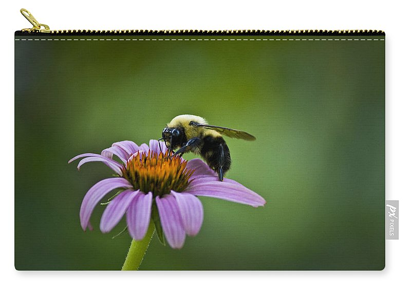 Bumblebee Carry-all Pouch featuring the photograph Bumblebee by Teresa Mucha