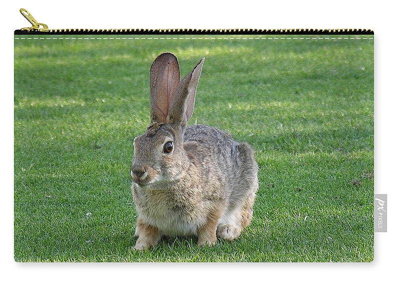 Bunny Carry-all Pouch featuring the photograph Bunny by Diane Greco-Lesser
