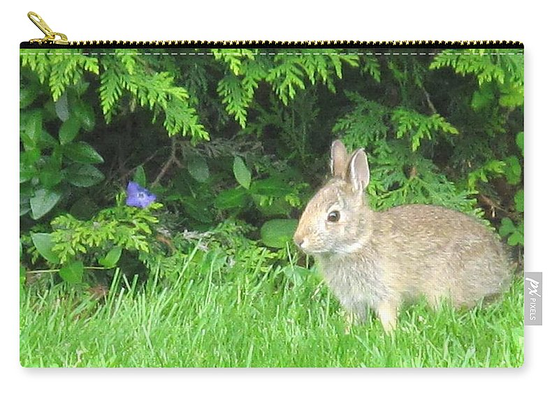 Rabbit Carry-all Pouch featuring the photograph Bunny In Repose by Ian MacDonald