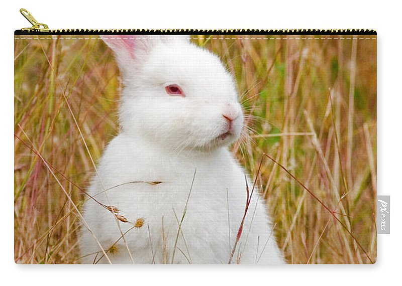 Rabbit Carry-all Pouch featuring the photograph Bunny by Randall Ingalls