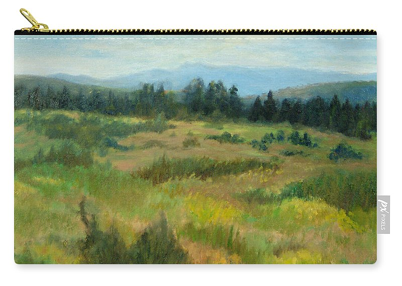 Landscape Carry-all Pouch featuring the painting Burnt Mesa Trail by Phyllis Tarlow