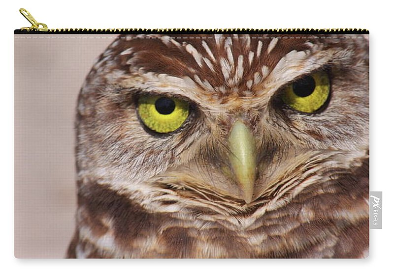 Burrowing Owl Carry-all Pouch featuring the photograph Burrowing Owl by Bruce J Robinson