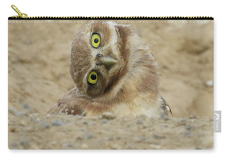 Burrowing Owl Carry-all Pouch featuring the photograph Burrowing Owl Tilted Head by Steve McKinzie