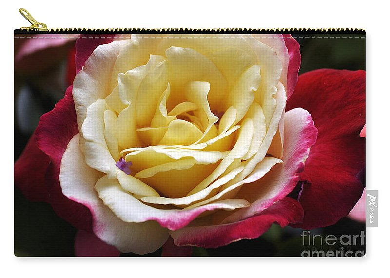 Clay Carry-all Pouch featuring the photograph Burst Of Rose by Clayton Bruster