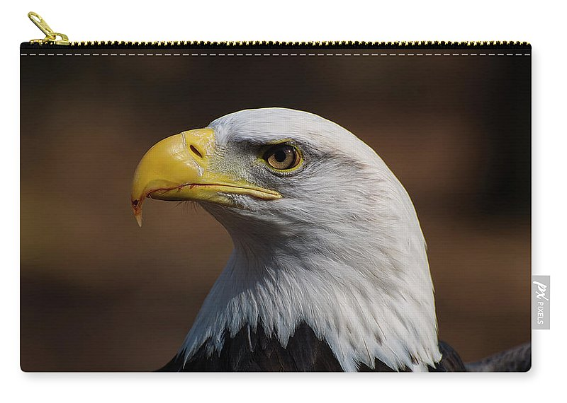 Bald Eagle Carry-all Pouch featuring the photograph bust image of a Bald Eagle by Chris Flees