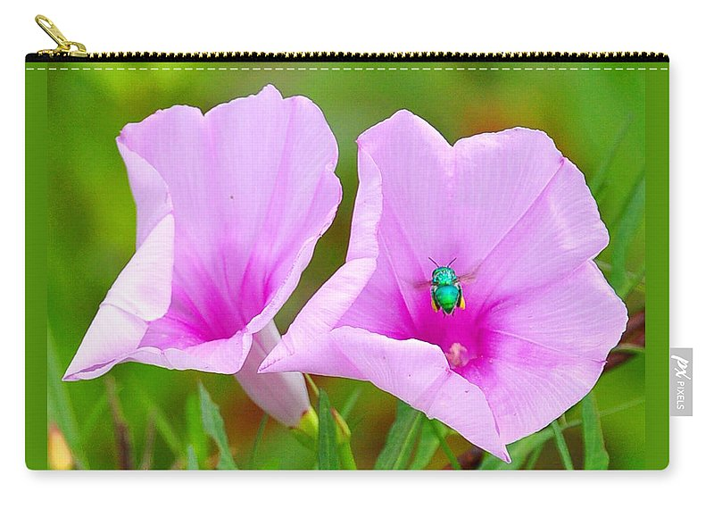 Flowers Carry-all Pouch featuring the photograph Busy Bug 2 by Amy Spear