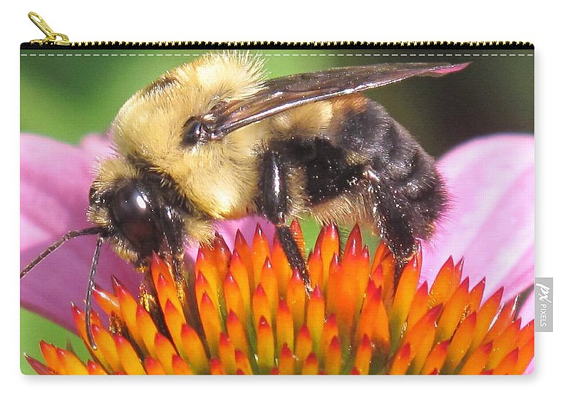 Bee Carry-all Pouch featuring the photograph Busy by Ian MacDonald