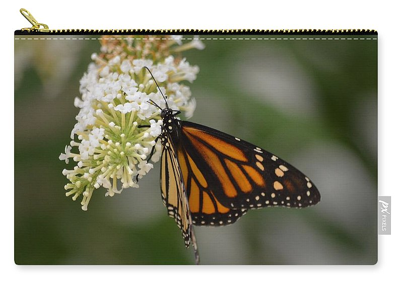 Butterfly Carry-all Pouch featuring the photograph Butterfly #6 by Barbara Matthews