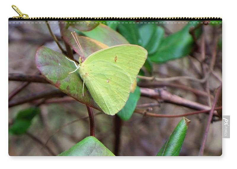 Butterfly Carry-all Pouch featuring the photograph Butterfly Camouflage by Betty Northcutt