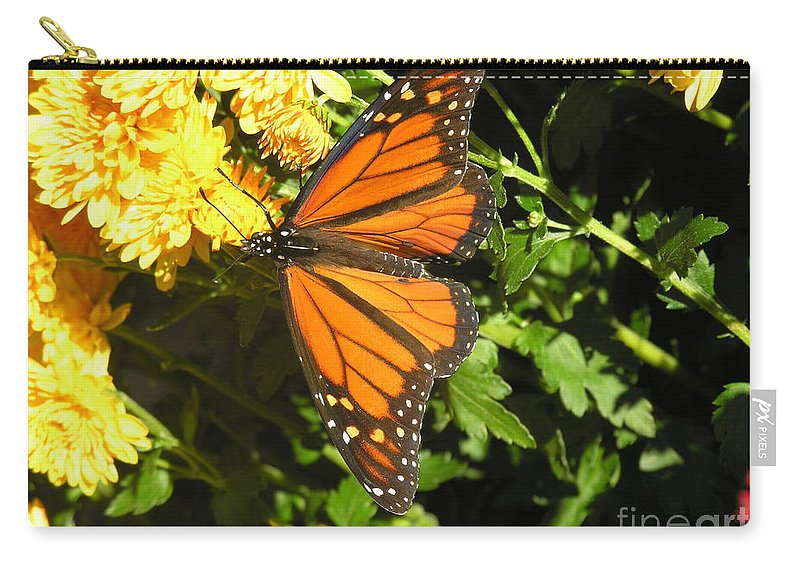 Butterfly Carry-all Pouch featuring the photograph Butterfly by Diane Greco-Lesser