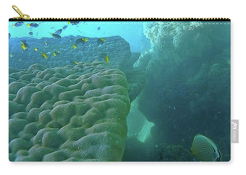 Great Barrier Reef Carry-all Pouch featuring the photograph Butterfly Fish by Debbie Cundy
