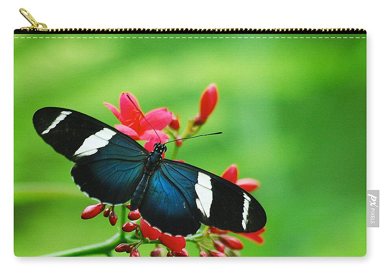 Wildlife Carry-all Pouch featuring the photograph Butterfly by Michael Peychich