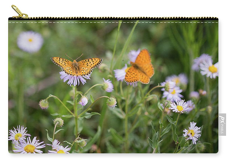 Crested Butte Carry-all Pouch featuring the photograph Butterfly On Fleabane #2 by Meagan Watson
