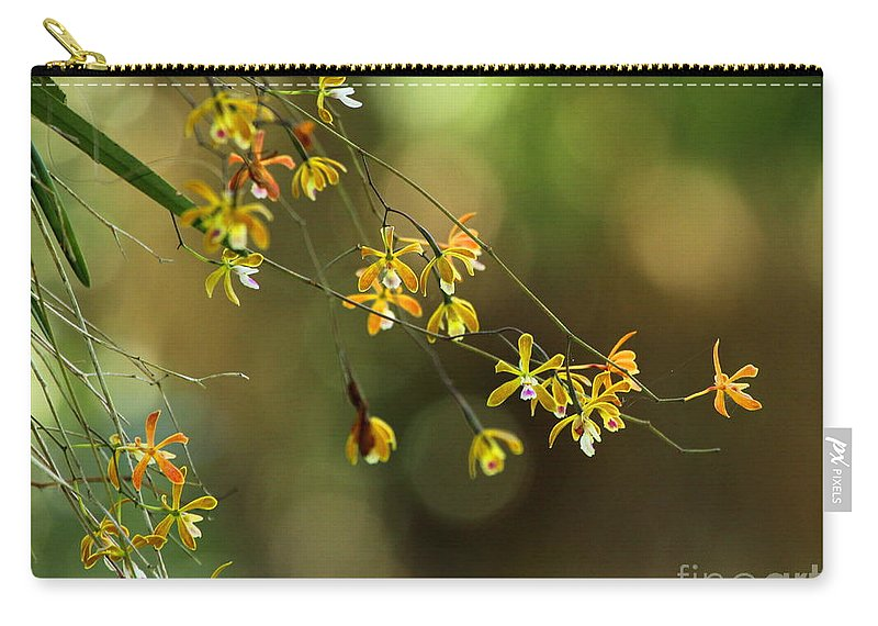 Butterfly Orchid Carry-all Pouch featuring the photograph Butterfly Orchid by Barbara Bowen