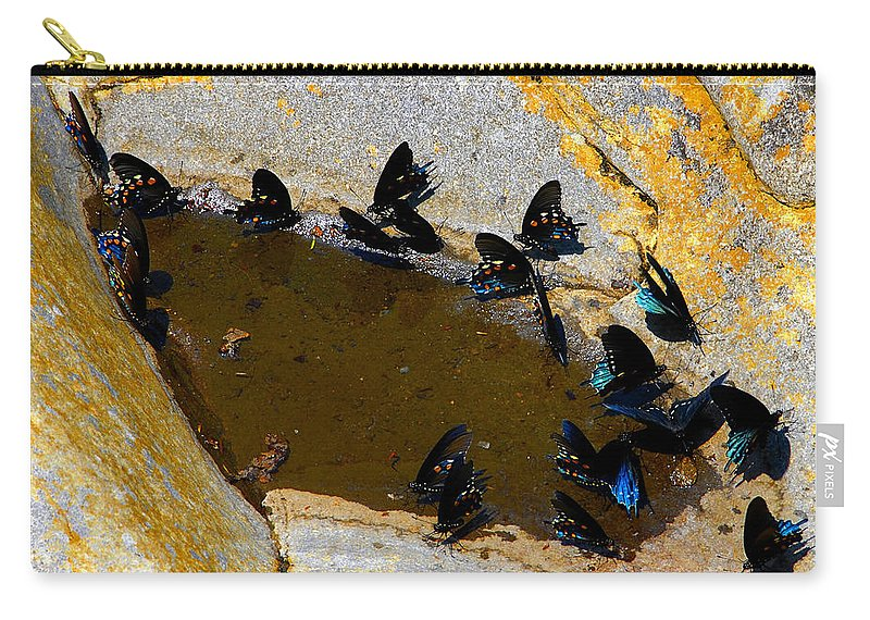 Butterflies Carry-all Pouch featuring the photograph Butterfly Pool by David Lee Thompson