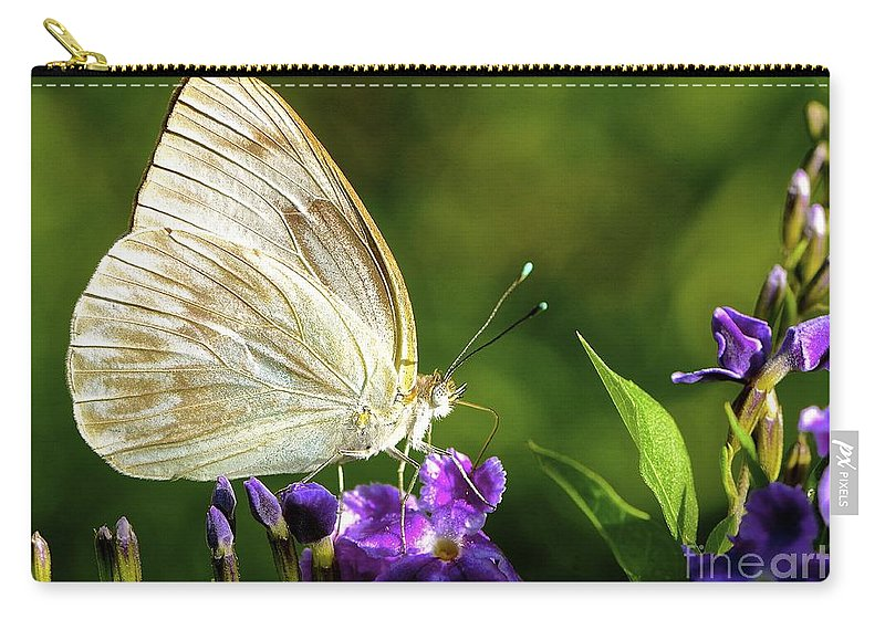 Butterfly Carry-all Pouch featuring the photograph Butterfly Tea Time by Lisa Renee Ludlum