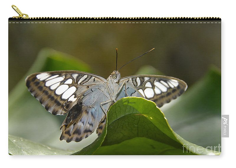 Pretty Carry-all Pouch featuring the photograph Butterfly Watching by David Lee Thompson