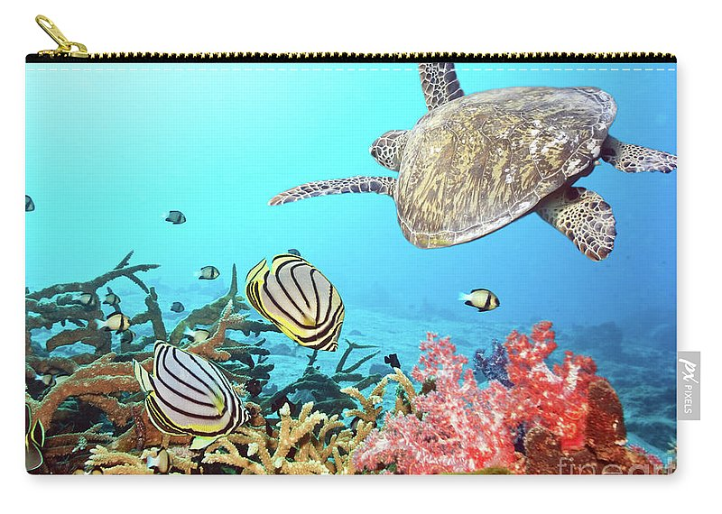 Butterflyfish Carry-all Pouch featuring the photograph Butterflyfishes And Turtle by MotHaiBaPhoto Prints
