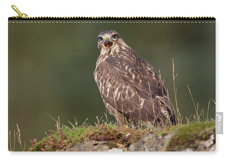Buzzard Carry-all Pouch featuring the photograph Buzzard Calling by Peter Walkden