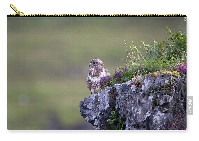 Buzzard Carry-all Pouch featuring the photograph Buzzard In Heather by Peter Walkden