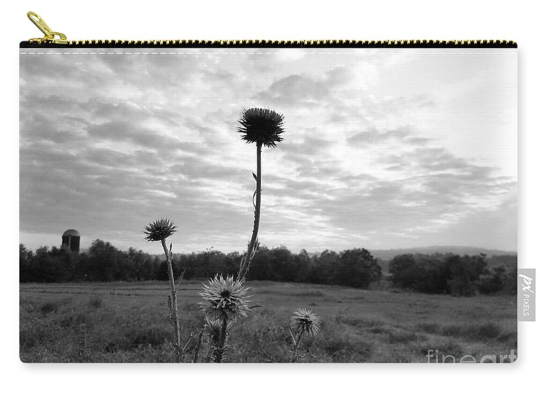 Bw Thistle Carry-all Pouch featuring the photograph Bw Thistle by Maria Urso