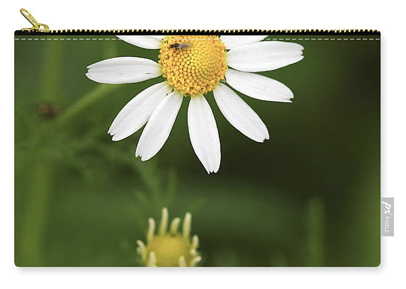 Flower Carry-all Pouch featuring the photograph By The Pond by Deborah Benoit