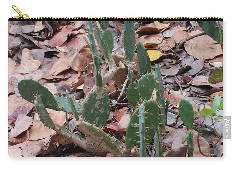 Cacti Carry-all Pouch featuring the photograph Cacti And Leaves by Rob Hans
