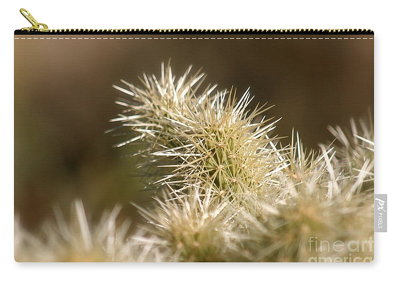 Cactus Carry-all Pouch featuring the photograph Cacti by Nadine Rippelmeyer