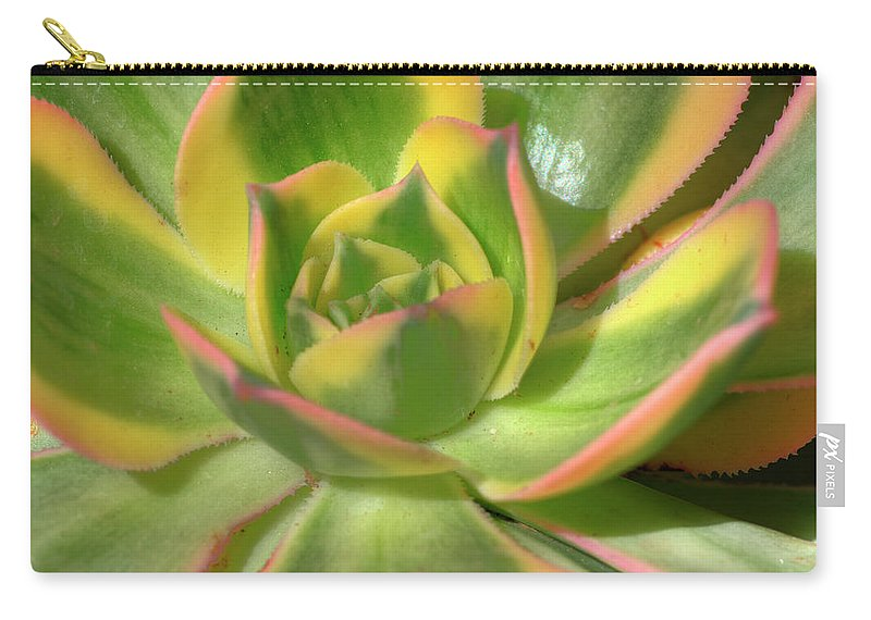 Cactus Carry-all Pouch featuring the photograph Cactus 4 by Jim And Emily Bush