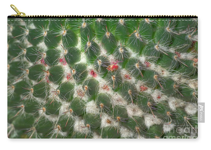 Cactus Carry-all Pouch featuring the photograph Cactus 5 by Jim And Emily Bush