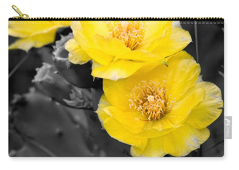 Cactus Carry-all Pouch featuring the photograph Cactus Blossom by Christopher Holmes