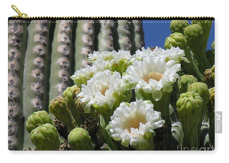 Cactus Carry-all Pouch featuring the photograph Cactus Budding by Diane Greco-Lesser