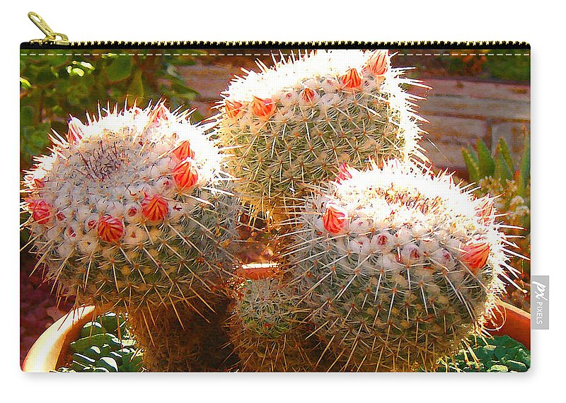 Landscape Carry-all Pouch featuring the photograph Cactus Buds by Amy Vangsgard