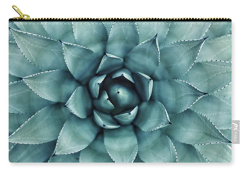 Cactus Carry-all Pouch featuring the photograph Cactus by Happy Home Artistry